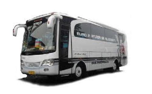 bis wisata