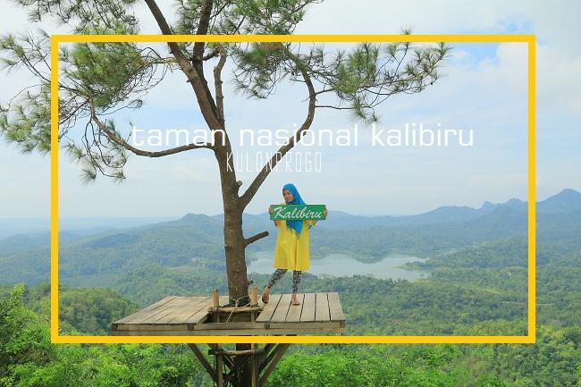 17 Tempat wisata di Yogyakarta Terpopuler - kalibiru