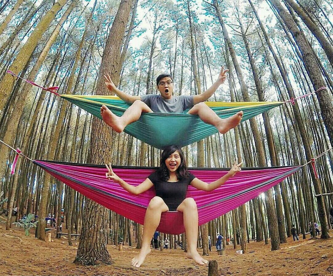Rental Mobil ke Tempat Wisata Hutan Pinus Mangunan di Yogyakarta